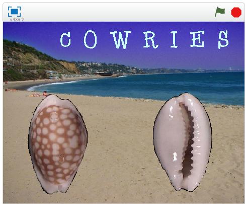 cowrie_blog